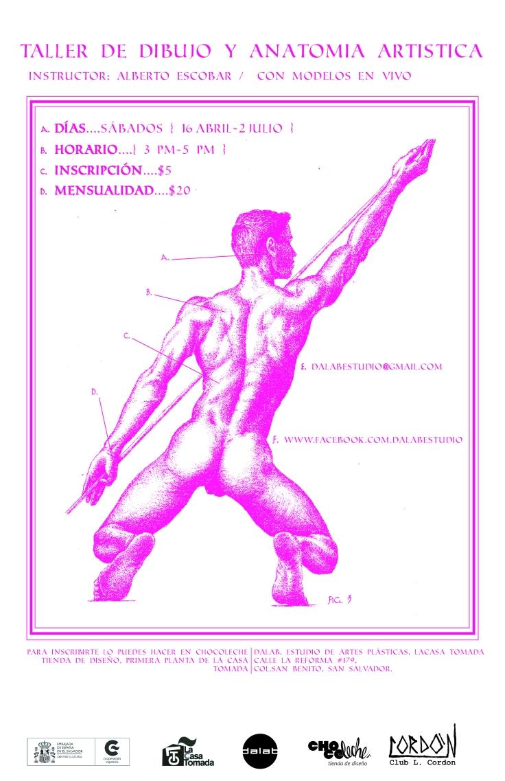 dibujo anatómico, poster-01